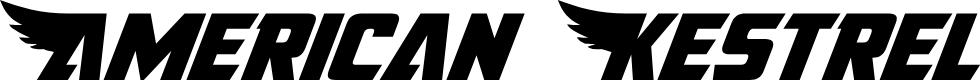 Preview image for American Kestrel Font