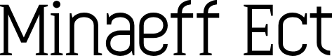 Preview image for Minaeff Ect Font