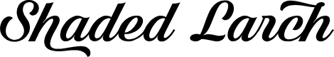 Preview image for Shaded Larch PERSONAL USE ONLY Font