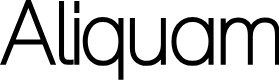 Preview image for Aliquam Font