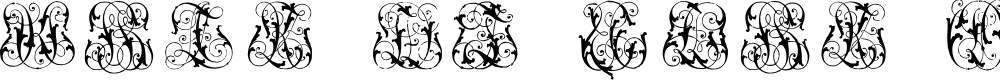 Preview image for Hard to Read Monograms Font