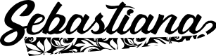 Preview image for Sebastianapersonaluse Font