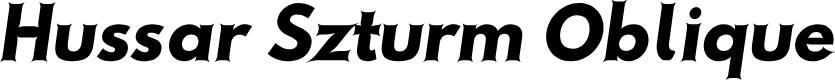 Preview image for Hussar Szturm Oblique