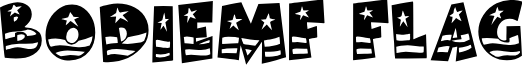 BodieMF Flag