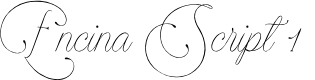Preview image for Encina Script 1 PERSONAL USE Font