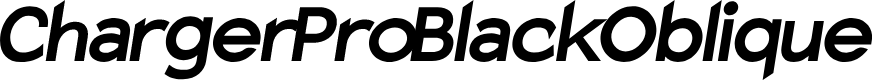 Preview image for Charger Pro Black Oblique