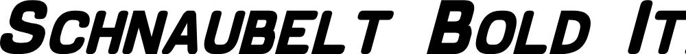 Preview image for Schnaubelt Bold Italic