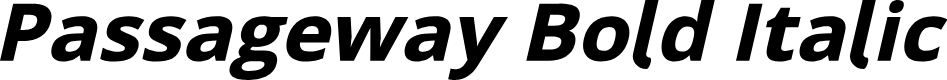 Preview image for Passageway Bold Italic