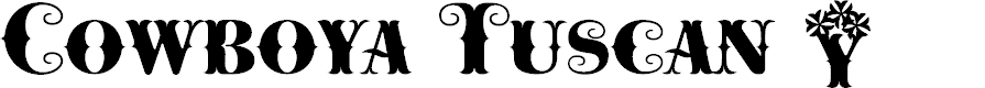Preview image for Cowboya-Bi Font