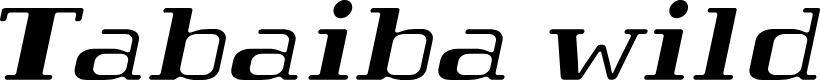 Preview image for Tabaibawildffp-Italic