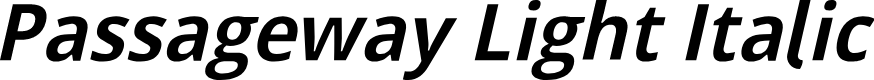 Preview image for Passageway Light Italic