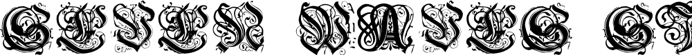 Preview image for Seven Waves sighs Salome Font