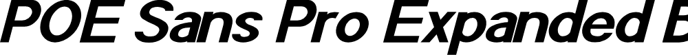 Preview image for POE Sans Pro Expanded Bold Italic