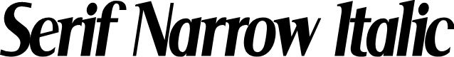Preview image for Serif Narrow Italic