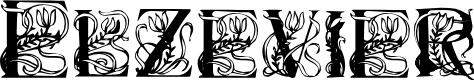 Preview image for Elzevier Regular Font