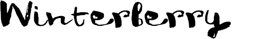 Preview image for DK Winterberry Regular Font