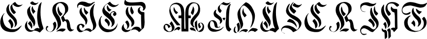 Preview image for Curved Manuscript, 17th c. Font