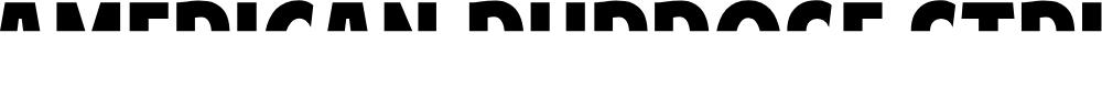 Preview image for American Purpose STRIPE 1 Normal Italic