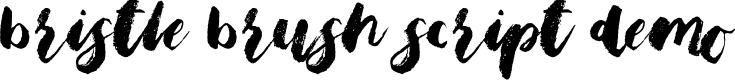 Preview image for Bristle Brush Script Demo Font