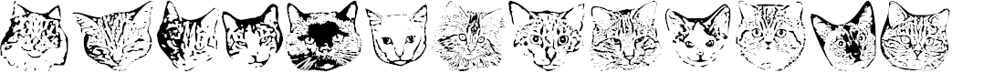 Preview image for KittyPrint AOE Font