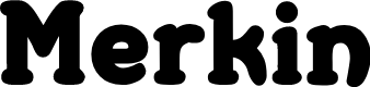 Preview image for Merkin Font