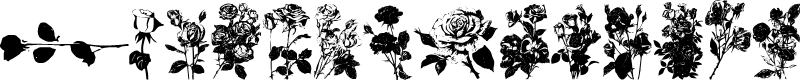 Preview image for Buds and Blossoms Font