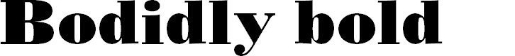 Preview image for BODIDLYbold Font